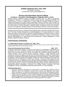 cio resume sle doc resume writing service nashville bestsellerbookdb