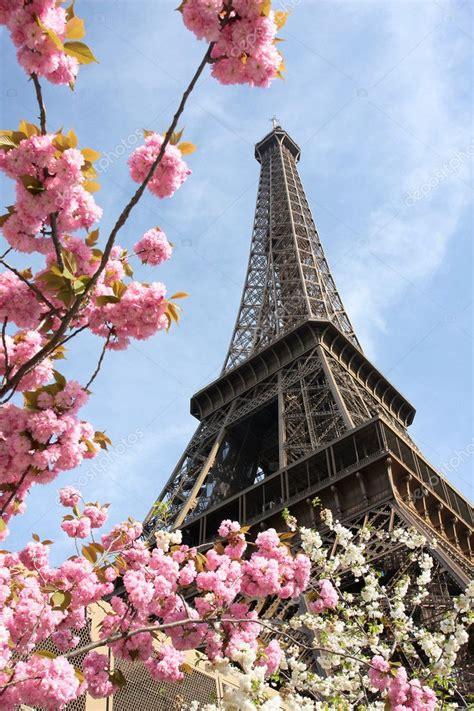 eiffel tower  spring time  paris france stock
