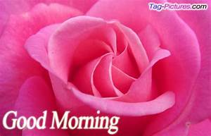 78+ images about good morning on Pinterest | Morning ...