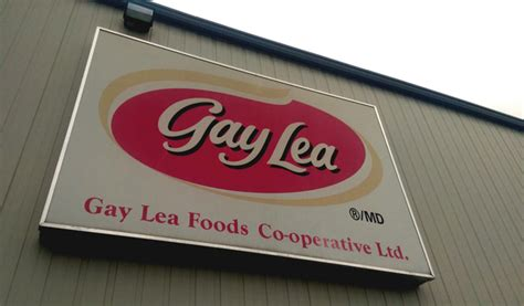 gay lea investing   upgrade teeswater ont plant