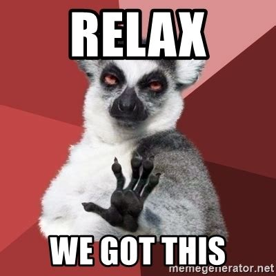 Relax Meme - relax we got this chill out lemur meme generator