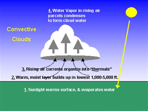 what kind of clouds usually form in a cold front water cycle cloud formation how do clouds form