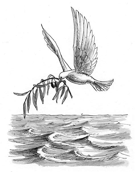 Genesis 8:11 Illustration - Dove and Olive Branch | Saint