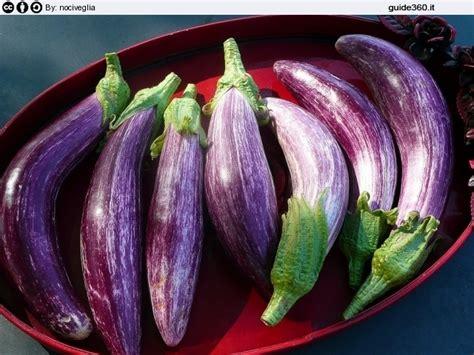 cucinare le melanzane dietetiche come cucinare le melanzane