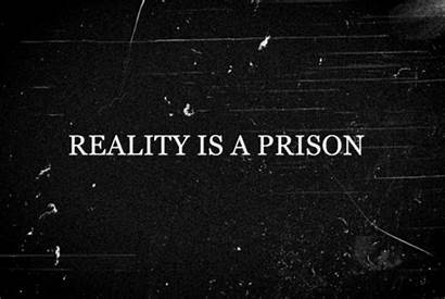 Reality Prison Quotes
