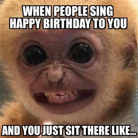 Birthday Memes Funny - the minions then you will surely love this nice funny birthday image memes