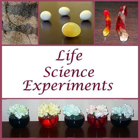 science experiments for preschool science 711 | a7c2ef31af645357f86b86dec8bcd516