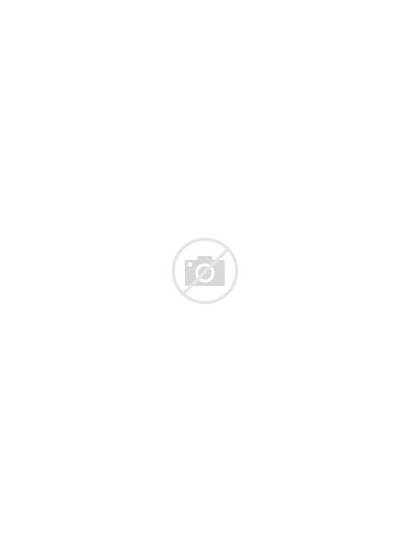 Montblanc Pen Ballpoint Solitaire Stainless Ii Steel