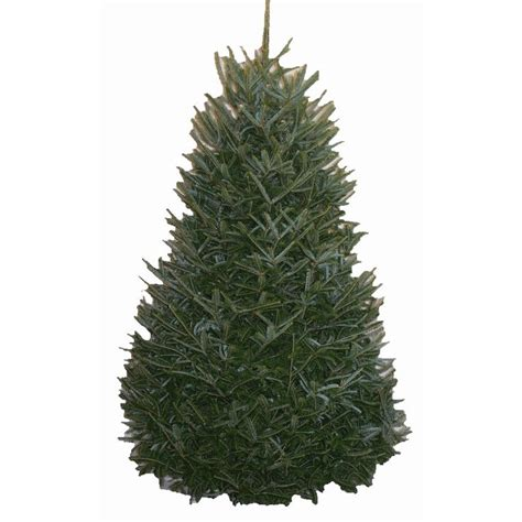 price of real christmas trees at home depot 25 best ideas about 12 ft tree on 12 foot tree tree