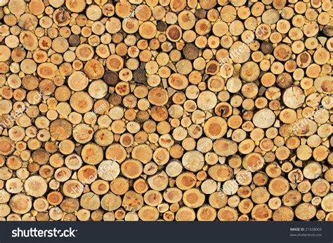 Big Wall Texture Made Log Wood Stock Photo 21928003