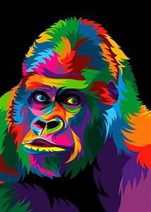 13, Colorful, Animal, Vector, Illustration, On, Behance
