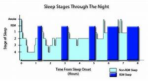 The Five Stages Of Sleep  Characteristics Of Non