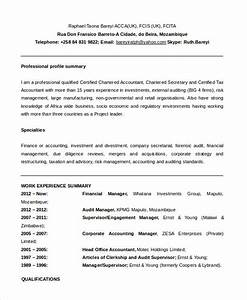 10 functional resume templates pdf doc free With functional resume format