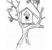 Bird House On ATree Coloring Pages  Best Place To Color