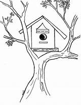Coloring Pages Bird Atree sketch template