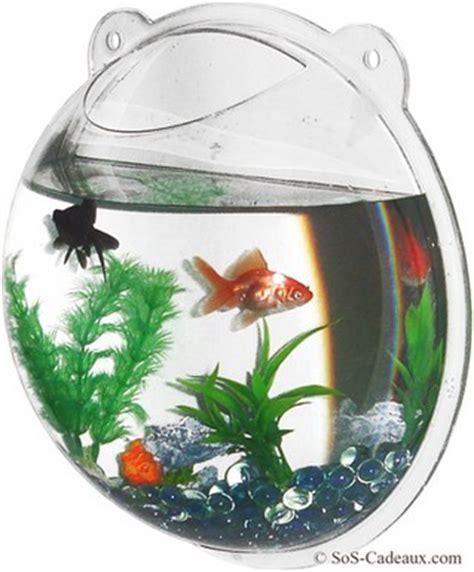 aquarium pour poisson esth 233 tique