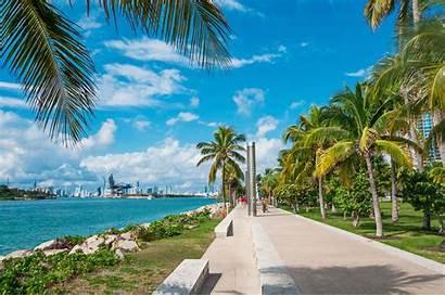Beach Miami Parks Palm Park Gardens Take