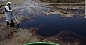 10 Million Gallons of BP Oil Continues to Decimate America ...