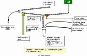 Inhaled Pge1 In Neonates With Hypoxemic Respiratory