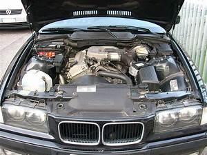 File Bmw 316 E36 Engine Bay-1 Jpg