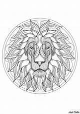 Mandala Lion Difficult Coloring Head Mandalas Adults Majestic Pencils Relaxing Music Zen Complex Level sketch template