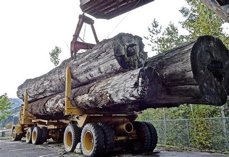 lumber paxton wood