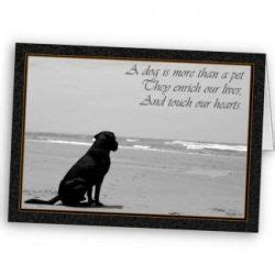 words of comfort for loss of pet the loss of a pet can be devastating to its owner and