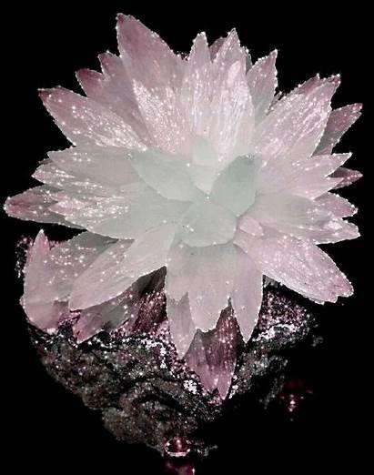 Minerals Crystals Stones Crystal Rocks Mineral Stone