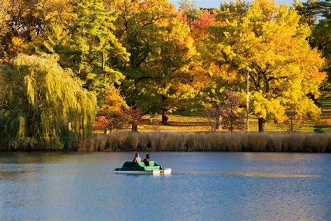 November In Forest Park By Richard Keeling