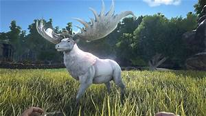 Megaloceros Official ARK Survival Evolved Wiki
