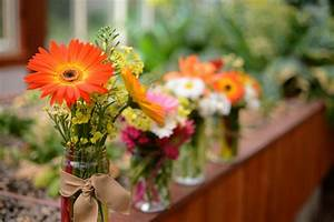 How To Keep Cut Flowers Fresh  A Guide To Making Cut
