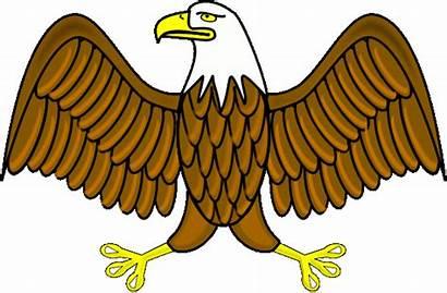 Wings Eagle Spread Clip Clipart Bald Animals