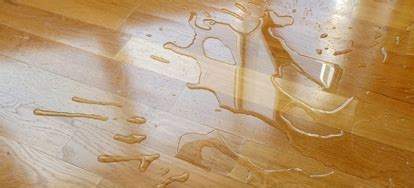 How to Waterproof a Wood Floor   DoItYourself.com
