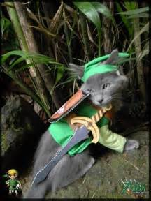Legend of Zelda Cat Costume