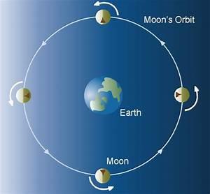 Lunar Rotation