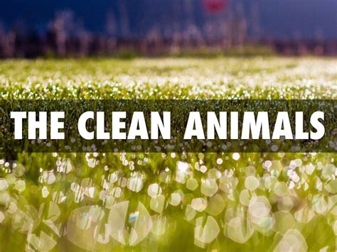 clean animals unclean