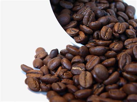Jamun seed caffeine free coffeedetox coffeediabetic coffee 40 sachets. Hemp Seed Coffee - Its Many Health Benefits - What to Know   Cannabis Examiners