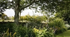 Grenzabstand Bäume Nrw : b ume str ucher und hecken grenzabstand beachten mein sch ner garten ~ Frokenaadalensverden.com Haus und Dekorationen