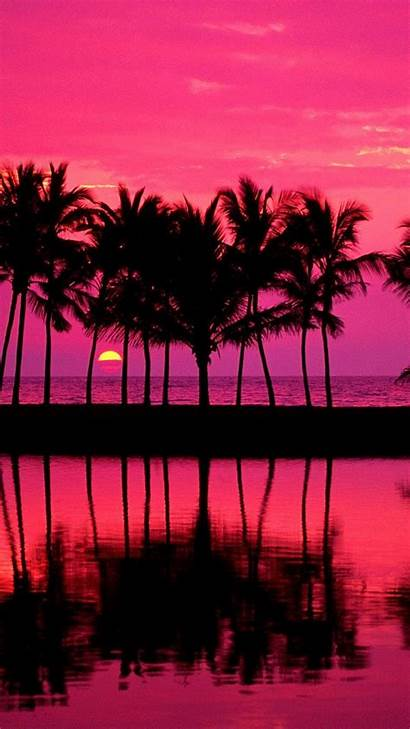 Girly Lock Screen Iphone Pink Palm Trees
