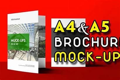 Brochure A5 Mockup Mock Fold Tri Ups