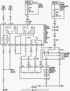 Jeep Tj Electrical Wiring Diagram Cleaver 1995 Jeep