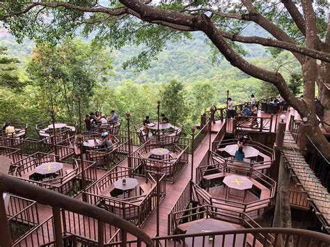 See more of the treehouse coffee shop and cafe on facebook. The Giant: Treehouse and Coffee Shop in the forest of Chiang Mai