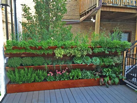 Best Edible Garden Ideas For An Organic, Healthy Lifestyle