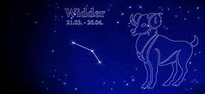 Widder Und Widder : widder 2016 norbert giesow ~ Orissabook.com Haus und Dekorationen