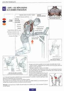 Best Chest Workouts