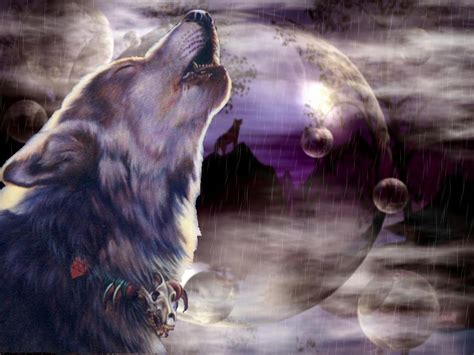 3d Wallpapers Wolf by 3d Wolf Wallpapers Wallpapersafari