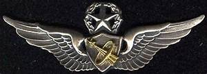 Wearing Army Astronaut Badge (page 2) - Pics about space