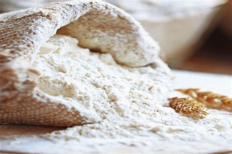 bread machine flour   purpose flour alices kitchen