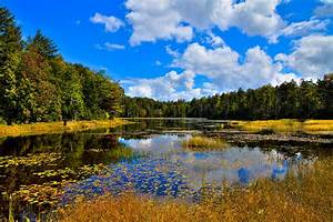 Early Autumn At Fly Pond - Old Forge New York Photograph