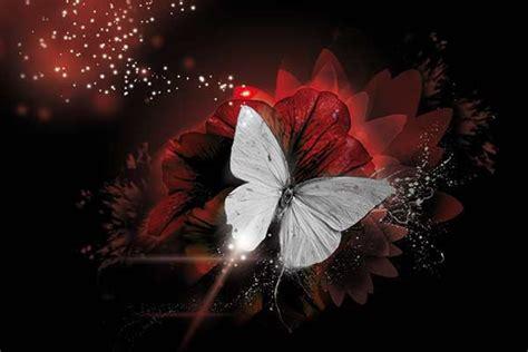 peinture chambre romantique tableau déco papillon de lumière izoa